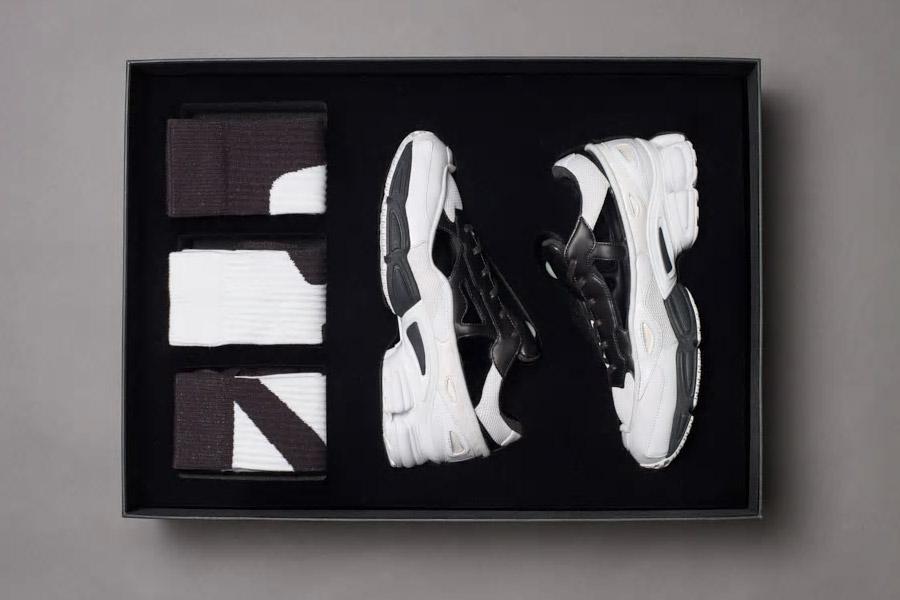 Raf Simons x adidas Ozweego Replicant (B22512 Black Cream White) - Box