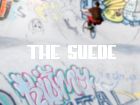 Suede Classic+ Skatepark