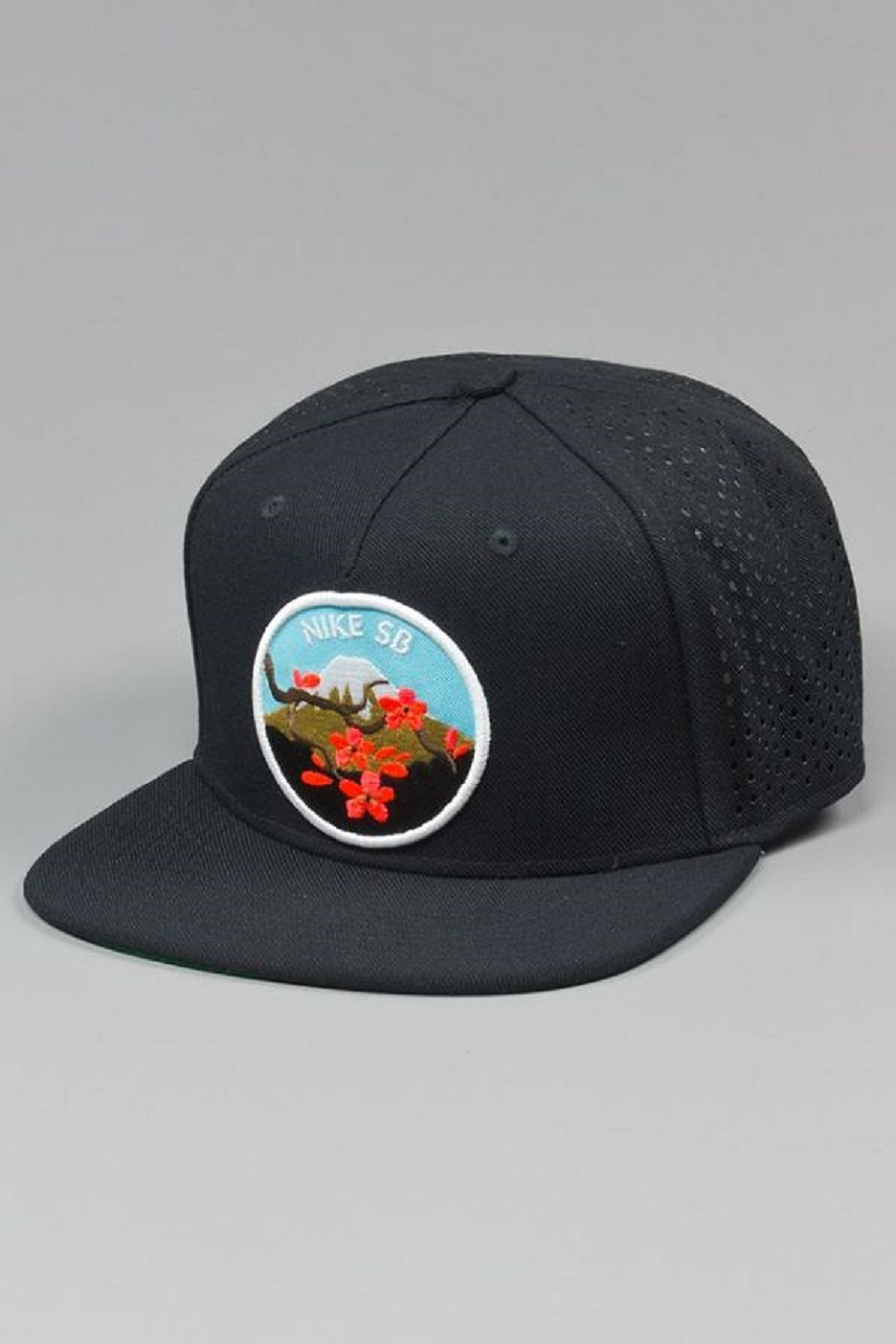 "0349ad485a8cc k-12769421 10204195771655015 776072717 n. Via Blowout ·  k-12810264 10204195771895021 1239422580 o. Heute ist das Nike SB ""Cherry  Blossom Pack"" ..."