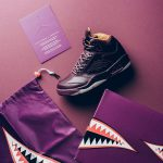Nike Air Jordan 5 Retro Premium Bordeaux (881432 612)