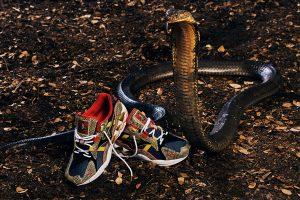 Best Sneakers of October 2018 - 24 Kilates x Mizuno Wave Rider 1 King Kobra