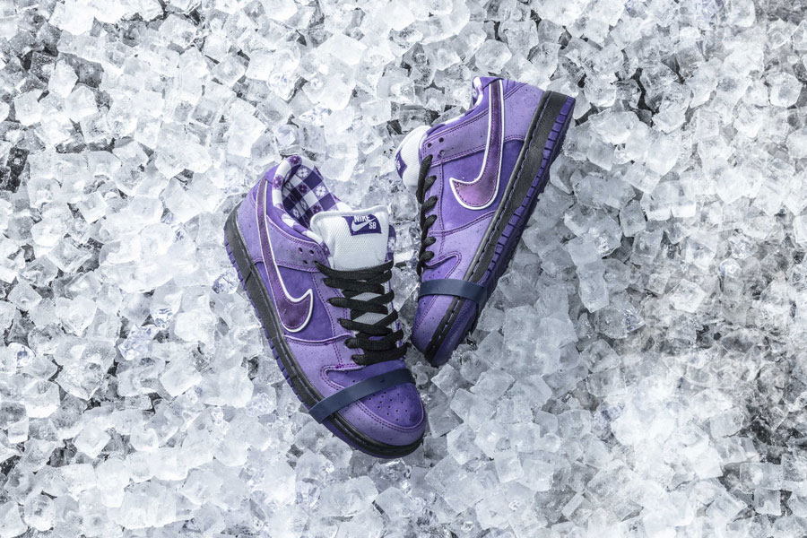 CONCEPTS x Nike SB Dunk Purple Lobster - Mood 2